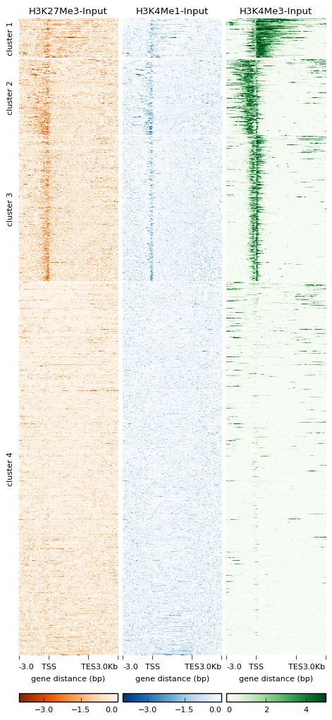 plotHeatmap — deepTools 3 3 0 documentation